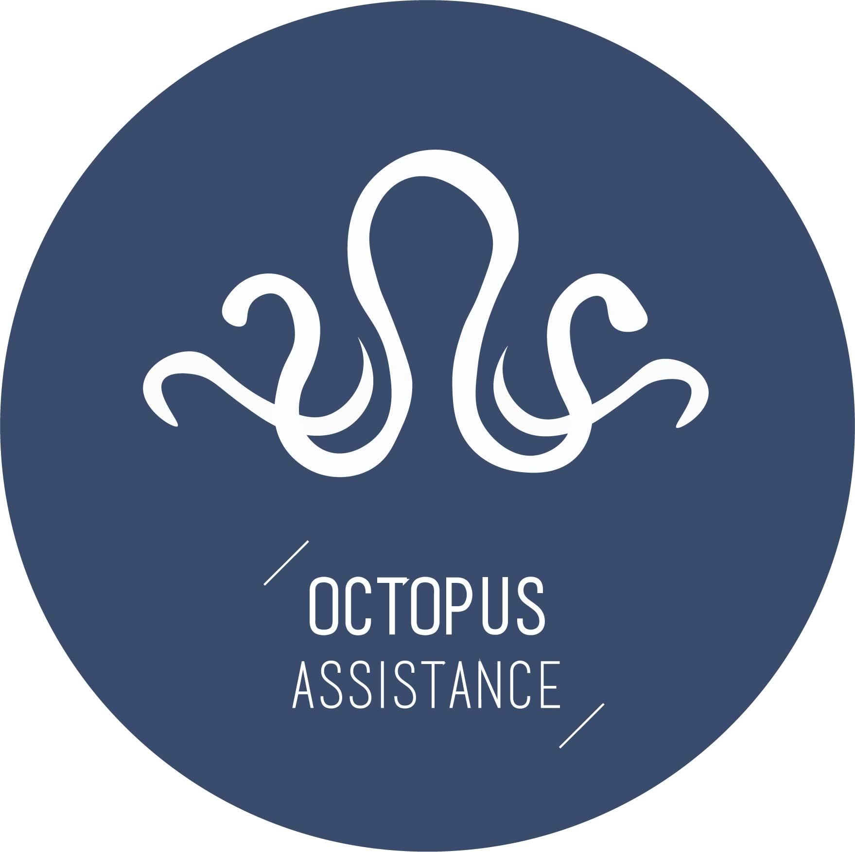 Octopus assistance - Conseil et stratégie en gestion d'entreprise